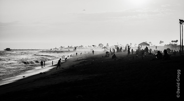 end of a summer's day (Monochrome)