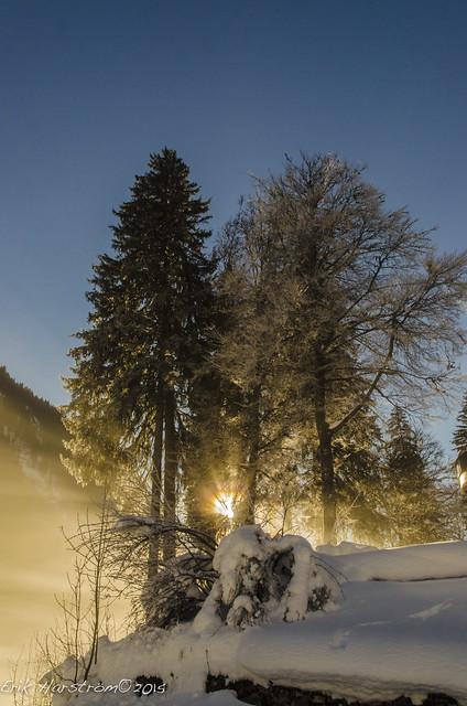 erikharstrom-Winter©2015-0093