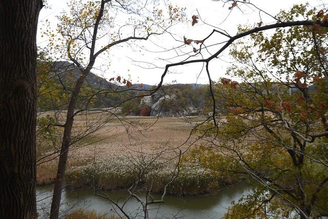 日, 2014-10-26 15:22 - Jones Pointの旧道から見たIona Island