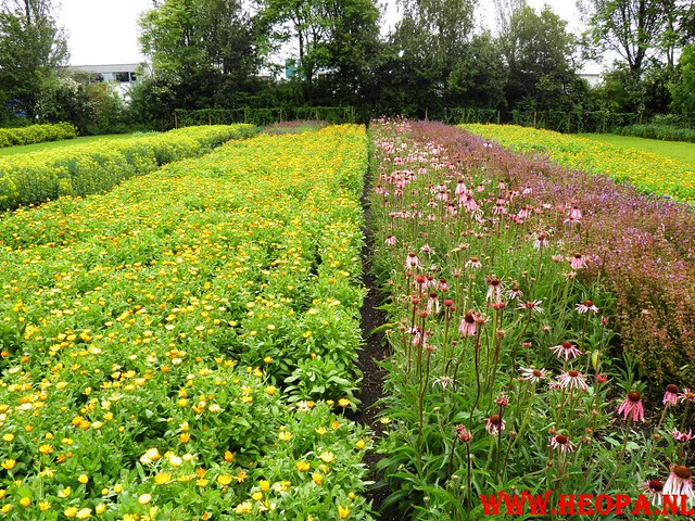 16-06-2011  Alkmaar 2e dag 25Km (72)