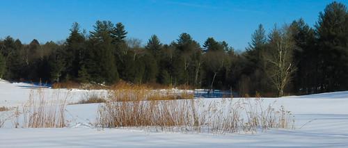 winter snow field season landscape odt canong15