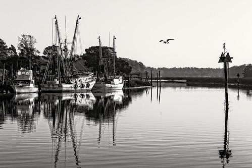 bw coast northcarolina shrimp seafood atlanticocean shrimpboat calabash littleriver ellas coastalcarolina jimmydurante mrscalabash calabashstyle calabashwaterfront