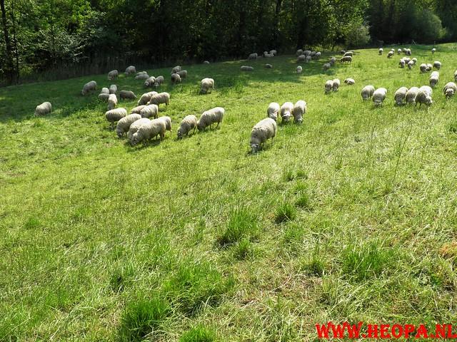 30-04-2011   Boven-Leeuwen  40 Km (52)