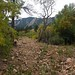 Sharon Brender Procopio- Boulder Flatirons near Enchanted Mesa trail