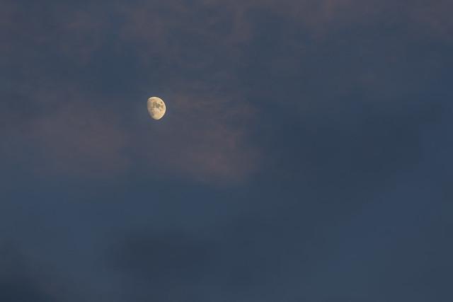 20141231_Last Moon