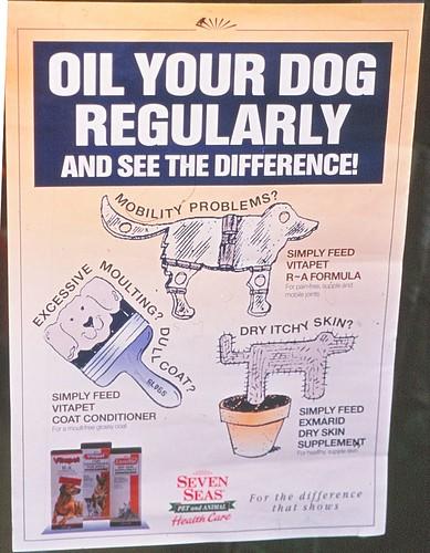 Dog care tip
