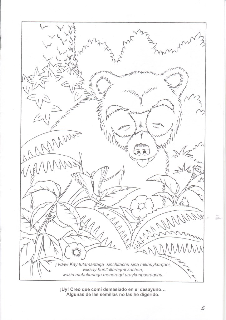 Oso De Anteojos Para Colorear Programa Bosques Andinos Flickr