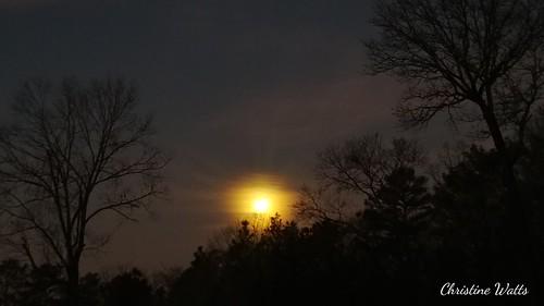 supermoon bloodmoon bluemoon lunareclipse goldenmoon astrophotography nightphotography lunareclipse2018 nature moon astronomy night nightsky