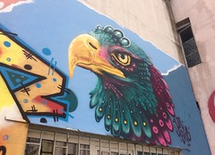 201705 - Balkans - Falcon Graffiti - Sofia - Oborishte - Sofia, May 21, 2017