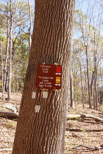 日, 2014-10-12 10:59 - Sterling Forest State Park
