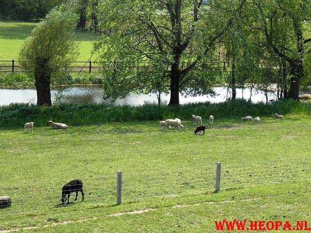 30-04-2011   Boven-Leeuwen  40 Km (54)