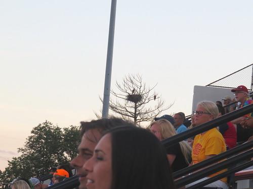 Mooseheart Stadium eaglets 20160708