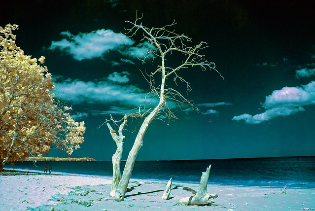 Andaman Seascape In Infrared