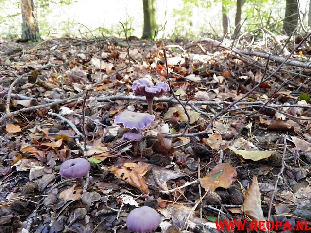 22-10-2011             Driebergen         26 km (157)