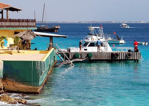 sea boats pelican caribbean bonaire ©allrightsreserved