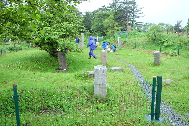墓地を清掃