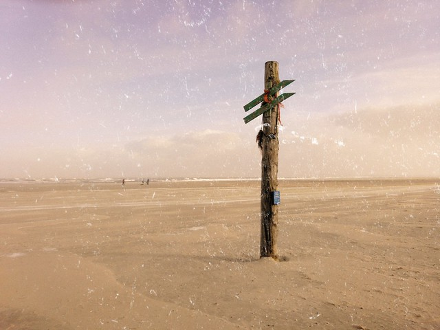Desert with guidepost
