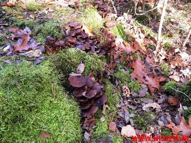 22-10-2011             Driebergen         26 km (136)
