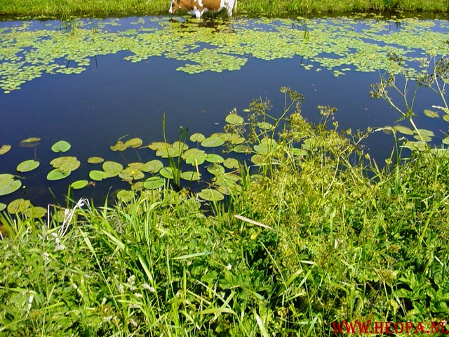 Oud Zuilen      16-06-2006                    40 Km (35)