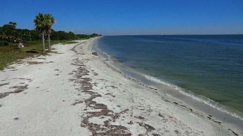 Fort de Soto Park - St.Petersburg (Florida - Gulfcoast): in the back the world-famous Sunshine Skyway Bridge
