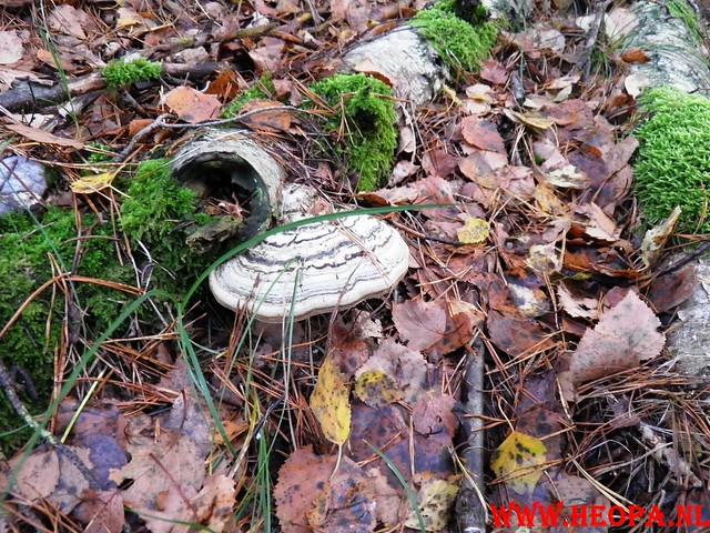 22-10-2011             Driebergen         26 km (38)