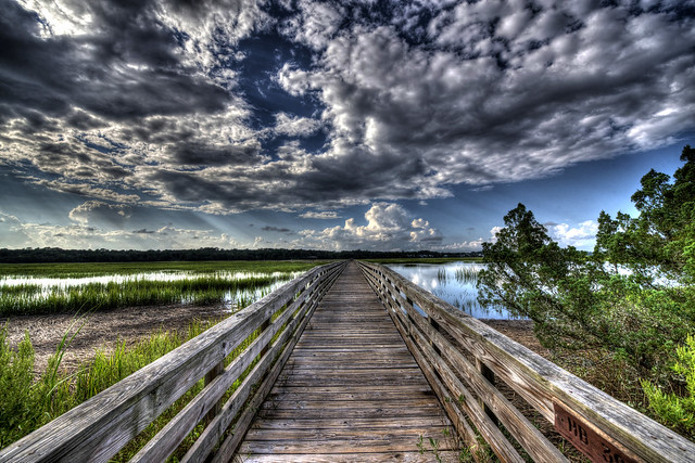 Huntington Beach State Park - South Carolina