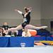 Fimleikar 2015 / Gymnastics 2015