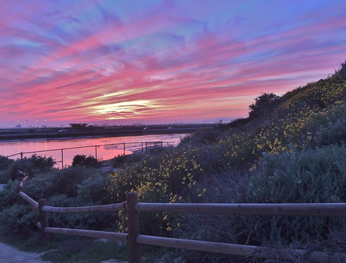 sunset nikon sunsets wetlands photoart artisticphotography bolsachica orangecountyca coastalcalifornia bolsachicawetlands huntingtonbeachca bolsachicaecologicalreserve californiawetlands natureasart p510 coastalwetlands bolsabay walkingbolsachica janeelizabethlazarz pacificcoastalwetlands