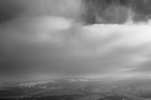 Day 55 _ In ze wind | by Daniel Nowak