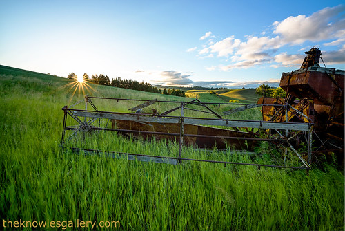 Old combine in a field at sunrise   by The Knowles Gallery