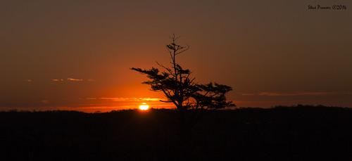 silhouette sunrise bravo uppertantallonns canoneosm