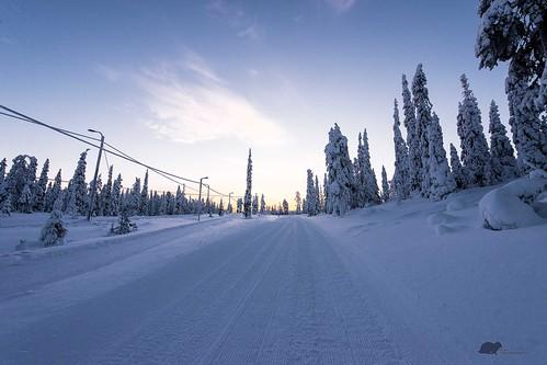 travel snow sunrise finland nikon tracks crosscountry ruka d610