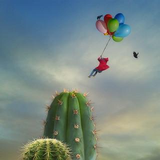 love is like a flight