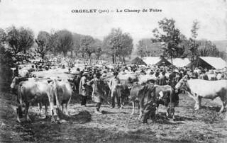 Le champ de foire à Orgelet
