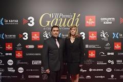 Catifa vermella VII Premis Gaudí (13)