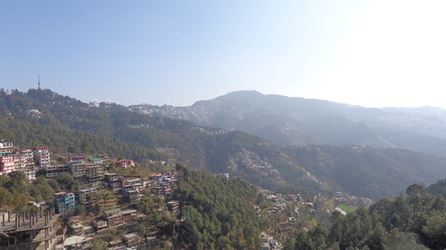 india asia himachalpradesh himachal pradesh shimla mountains mountain hill hills terraces terraced