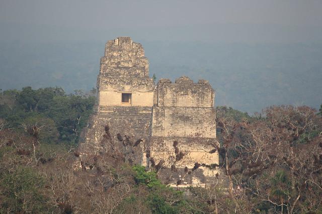 Tikal, Temple I and II