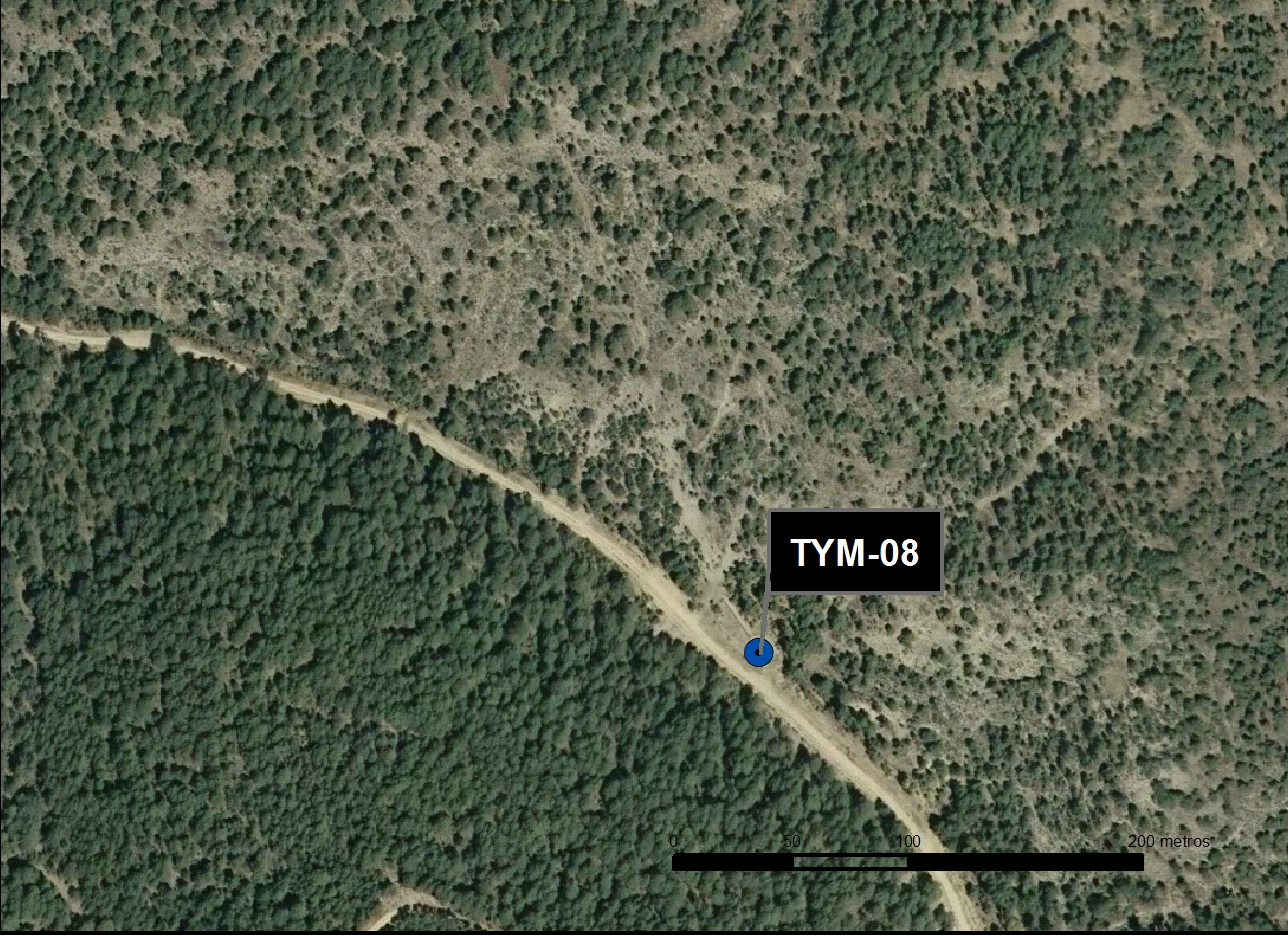 TYM_08_M.V.LOZANO_FONTARRONES II_ORTO 1