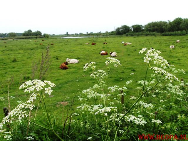 09-05-2009         Wagennigen        40 Km (97)