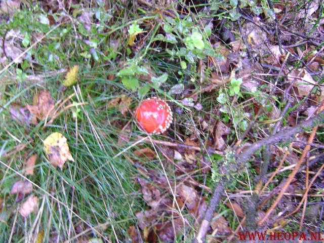 Ede Gelderla            05-10-2008         40 Km (19)