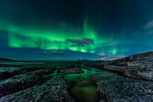 Aurora, Håja, green sea and reflections.