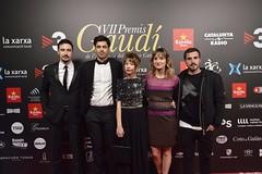 Catifa vermella VII Premis Gaudí (22)