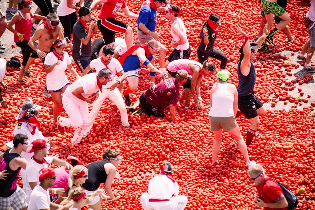 tomato_fight!