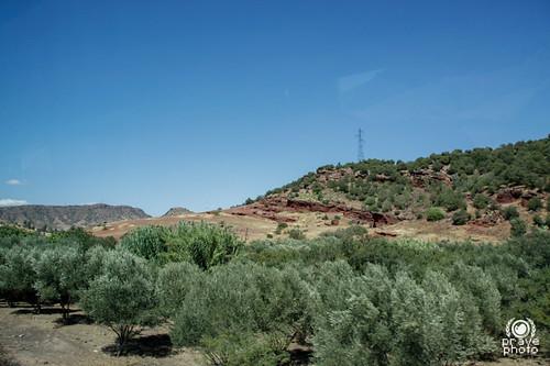 morocco maroc marocco atlante モロッコ almamlaka المملكةالمغربية جبالالأطلس visitmorocco almaghribiyya tourdelmarocco