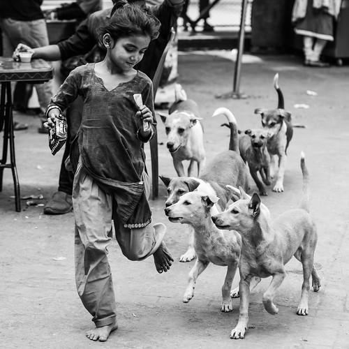Her pets | by A. adnan