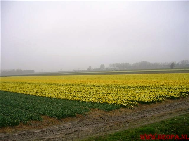 2009-04-04    Lisse 30 Km  (9)