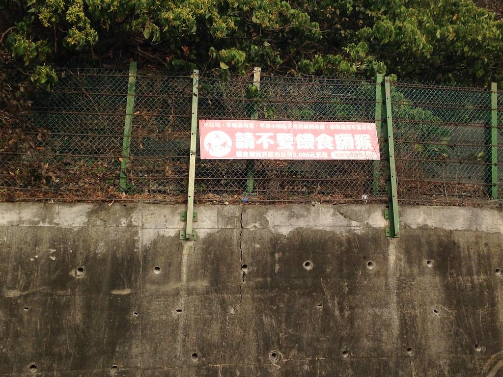 壽山國家公園的人猴衝突問題,人為餵食是關鍵因素。本報資料照,廖靜蕙攝。