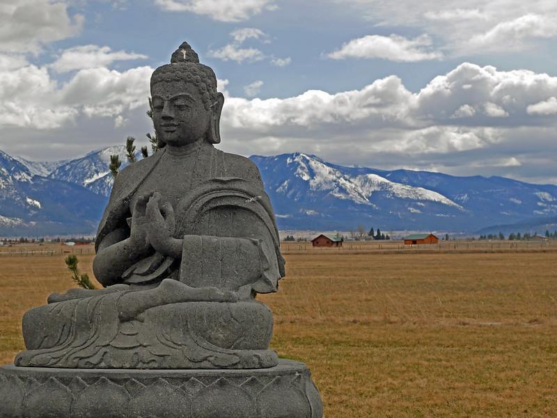 1000 Buddhas (25)