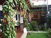 Antigua Guatemala – Casa Elena, foto: Petr Nejedlý