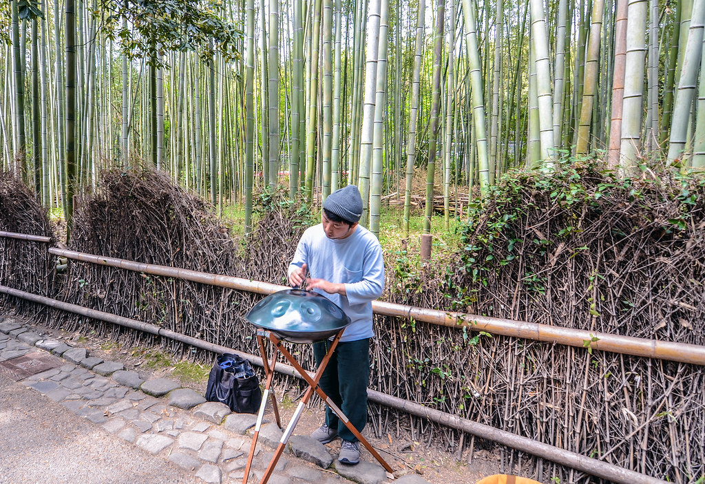 percussion Bamboo Grove